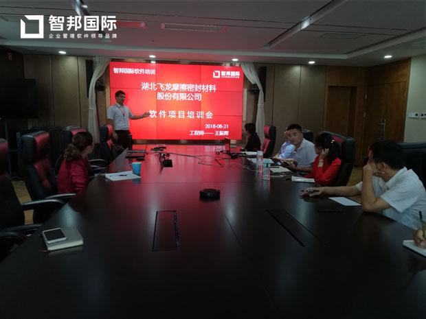 湖北飞龙摩擦密封材料股份有限公司智邦国际ERP系统实施现场